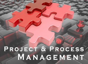 Project & Process Management Grafik